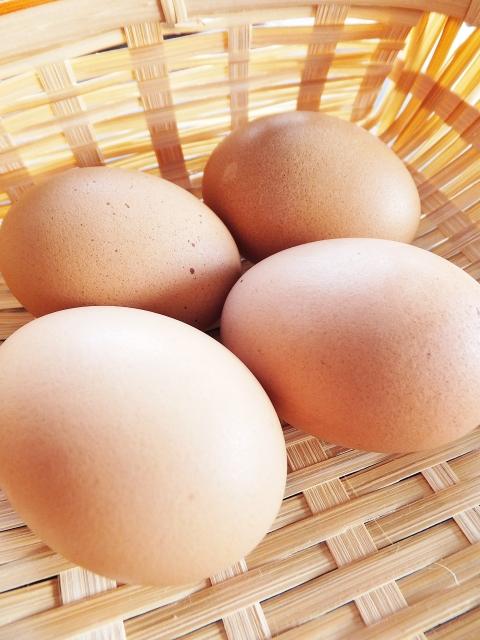 卵は1日何個まで?摂取量の目安とは?